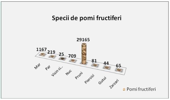 specii_pomi2